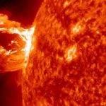 20463 Год из жизни Солнца