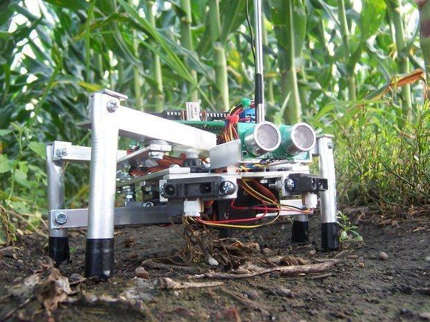 Японских фермеров заменят роботами