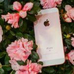 39814 iPhone SE занял первое место среди смартфонов, которыми довольны потребители