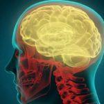 44624 Мозговой имплант остановит насильников и любителей поесть
