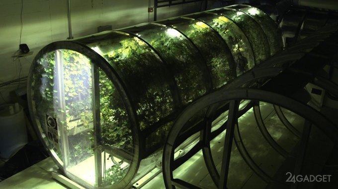 В NASA создали теплицу для космических колонизаторов (5 фото)